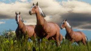 Cavalos Red Dead Redemption 2